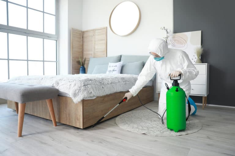 cleaning and sanitization