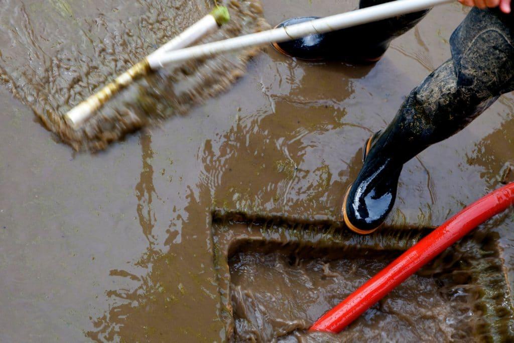 water restoration company